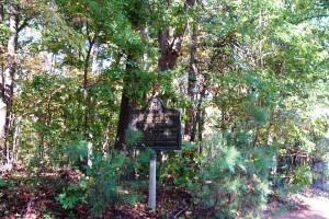 Gen. George H. Thomas' Headquarters: Army of the Cumberland, June 24 - July 3, 1864
