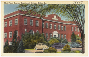 flint_plant_georgia_experiment_station_griffin_ga-_8367051635