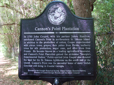 Cannons-point-plantation