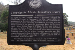 Campaign for Atlanta: Johnston's Review